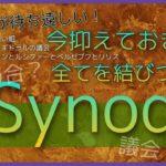 【メギド72】ストーリーの謎が一気にスッキリ?!9章2節が来る前に知っておきたい「キーワード」は「Synod」【考察動画】